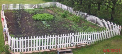 This will be where we post the most recent pic of our garden, if I remember to change it.. :-)